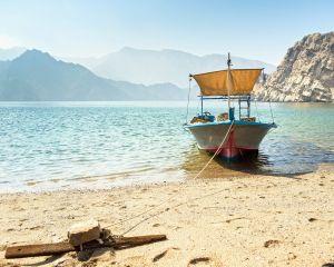 dmc Oman